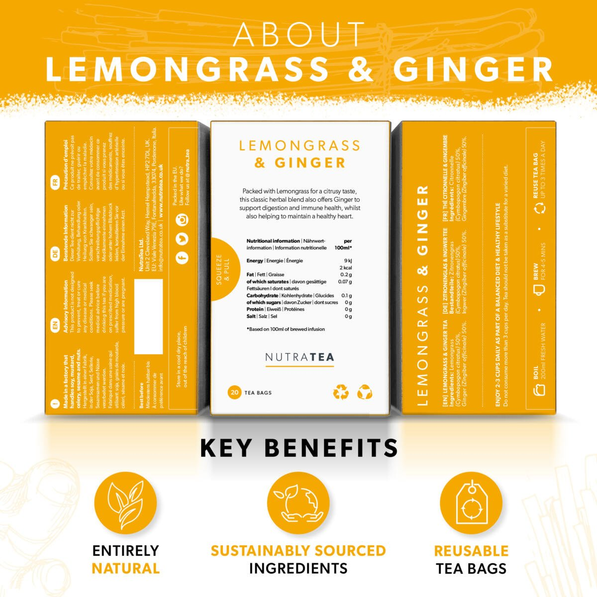 LEMONGRASS & GINGER_SUPPORT_PAGES2